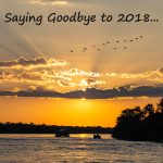 Saying Goodbye to 2018