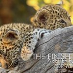The Finish Line a Better Future for Wildlife