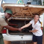 More than 795 snares removed in 3 months by supporting Anti-poaching efforts in Victoria Falls, Zimbabwe during COVID-19