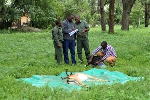 wildlife-forensics-training